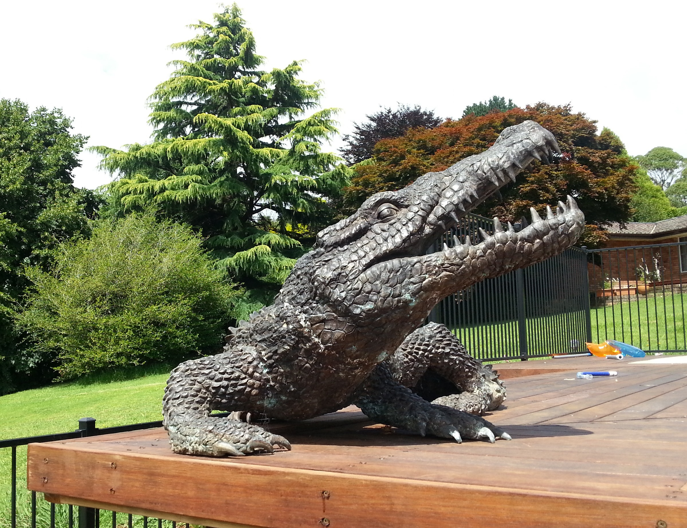 Hardwood Decking crocodile